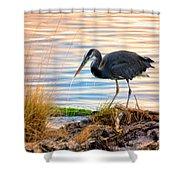 Wheeler Oregon - Great Blue Heron Shower Curtain