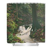 When I Feel Your Love Shower Curtain