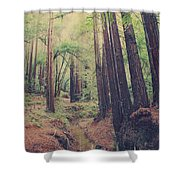 Wherever You May Roam Shower Curtain