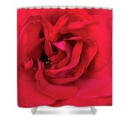 Whisper Of Passion Shower Curtain