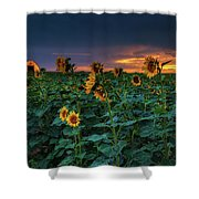 Whispers Of Summer Shower Curtain by John De Bord