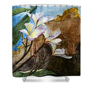 White Flower With Abstract Background Shower Curtain