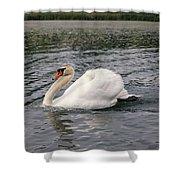White Swan On Lake Shower Curtain