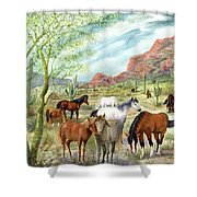 Wild And Free Forever Shower Curtain