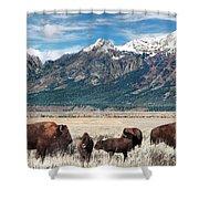 Wild Bison On The Open Range Shower Curtain