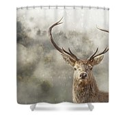Wild Nature - Stag Shower Curtain