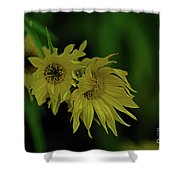 Wild Sunflowers In The Wind Shower Curtain