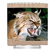 Wildcats Mascot 4 Shower Curtain