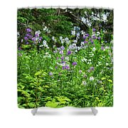 Wildflowers On Green's Hills Shower Curtain