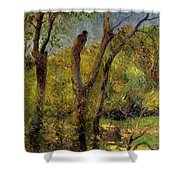 Willows 1885 Shower Curtain