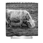 Windblown In Scotland Black And White Shower Curtain
