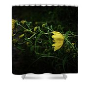 Windy Weeds Shower Curtain