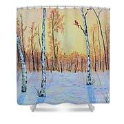 Winter Birches-cardinal Right Shower Curtain