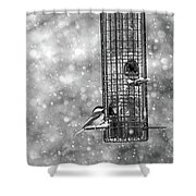 Winter Blessing Chickadee Shower Curtain