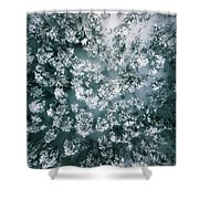 Winter Forest - Aerial Photography Shower Curtain