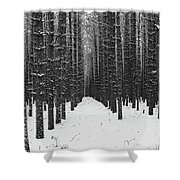 Winter Forest In Black And White Shower Curtain