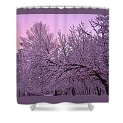 Winter In New England Shower Curtain