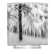 Winter Shower Curtain by Okan YILMAZ