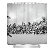 Winter Storm Anderson Pond Shower Curtain