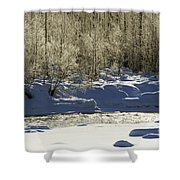 Winter Stream Near Hope On The Kenai Peninsula Alaska Shower Curtain