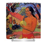 Woman Holding A Fruit 1893 Shower Curtain