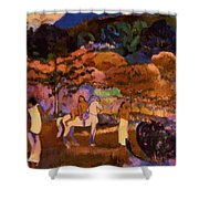 Women And White Horse 1903 Shower Curtain
