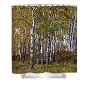 Wonders Of The Wilderness Shower Curtain