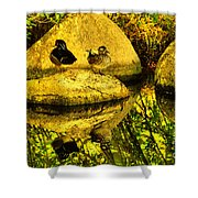 Wood Duck Pair And Their Reflection Shower Curtain