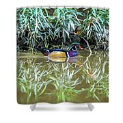 Wood Duck Reflection Shower Curtain