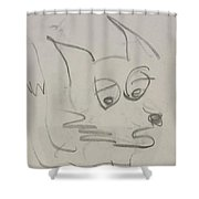 Worried Fox Sketch Shower Curtain