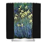 Yellow Irises - Digital Remastered Edition Shower Curtain