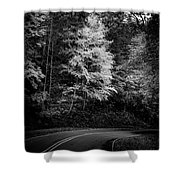 Yellow Tree In The Curve In Black And White Shower Curtain