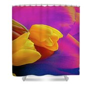 Yellow Tulips 2 Shower Curtain
