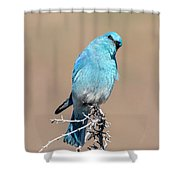 You Lookiing At Me Shower Curtain