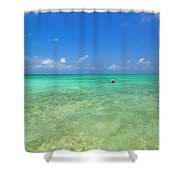 Your Dream Begins Here Shower Curtain