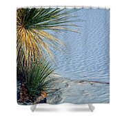 Yucca Plant In Rippled Sand Dunes In White Sands National Monument, New Mexico - Newm500 00113 Shower Curtain
