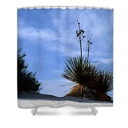 Yucca Plant In Rippled Sand Dunes In White Sands National Monument - Newm500 00107 Shower Curtain