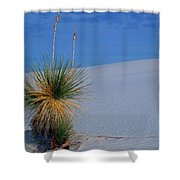 Yucca Plant In Sand Dunes In White Sands National Monument, New Mexico - Newm500 00112 Shower Curtain