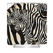 Z Is For Zebras Shower Curtain