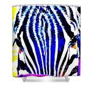 Zany Zebra II Shower Curtain