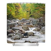 Zealand River - White Mountains, New Hampshire Shower Curtain by Erin Paul Donovan