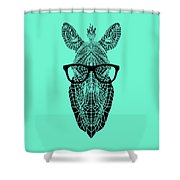 Zebra In Glasses Shower Curtain