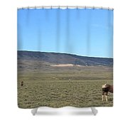 Zeus And Family Shower Curtain