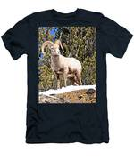 The Perfect Pose Men's T-Shirt (Athletic Fit)