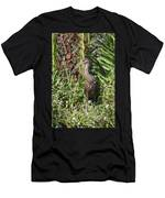 Limpkin And Apple Snail Men's T-Shirt (Athletic Fit)