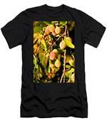 Yellow Plums Men's T-Shirt (Athletic Fit)
