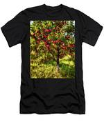 Apple Orchard II Men's T-Shirt (Athletic Fit)