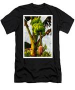 Banana Trees With Fruits And Flower In Lush Tropical Garden Men's T-Shirt (Athletic Fit)