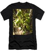 Bear Fruit Men's T-Shirt (Athletic Fit)
