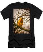 Bird Holding Food In Mouth Men's T-Shirt (Athletic Fit)